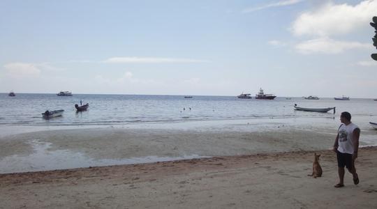 潮が引いている今日のタオ島
