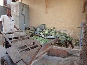 ダハブで売っている野菜の状態は・・・