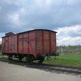 ポツンとたたずむビルケナウの貨物車