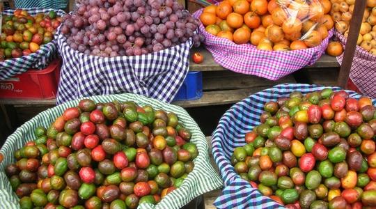 新鮮なフルーツが並ぶアンティグアの市場