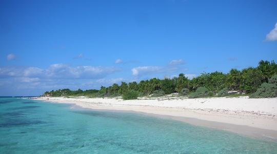 コスメルの美しい海でダイビング。コスメルの海はまるで竜宮城
