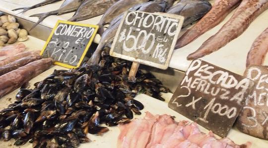 ビーニャ・デル・マルの魚市場には新鮮な魚が並ぶ
