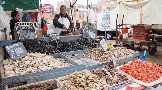 朝9時半のビーニャ・デル・マルの魚市場は活気に満ちている