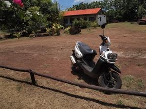今日のイースター島の足はYAMAHAの100CCのバイク