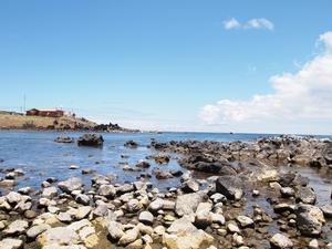 イースター島のウニが生息する岩場の海岸