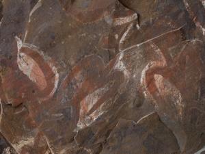 食人洞窟にある鳥人の絵