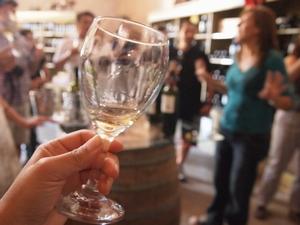 メンドーサのワイナリーツアーでおいしいワインを試飲