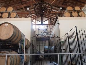 メンドーサのワイナリーツアーでワイン造りの工程を学ぶ