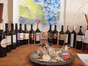 メンドーサのワイナリーツアーではおいしいワインが800円から買える