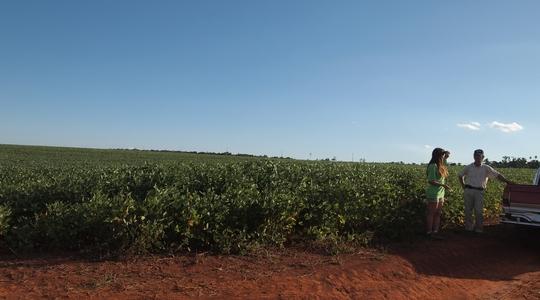 園田さんとイグアス移住区の広大な大豆畑へ