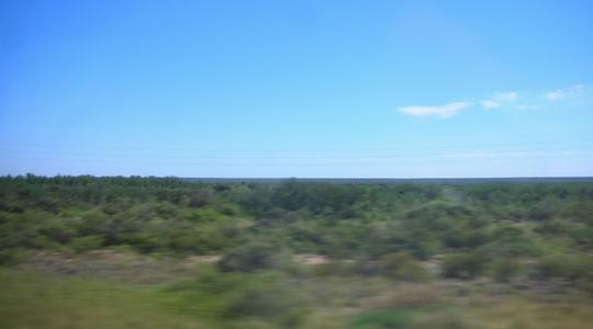 ブエノスアイレスからプエルト・マドリンへのバスから見えるどこまでも続くパタゴニアの大地