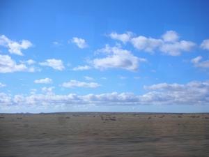 ウシュアイアへ向かうバスの車窓から見えるバンパの景色。ヒマな時間が続く