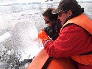 南極の流氷をゲット。透き通っていてとてもきれい