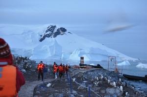 巨大な氷河の大崩落に逃げ惑う人間、ペンギン、鳥