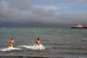 南極での海水浴は熱冷たい!