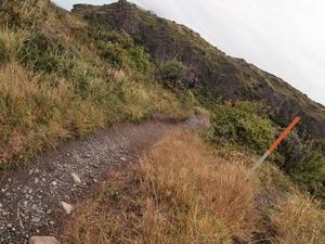 パイネグランデキャンプ場の下の道を歩くお散歩コースの道。