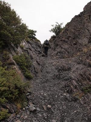 パイネグランデキャンプ場の下の道を歩くお散歩コースの登り。