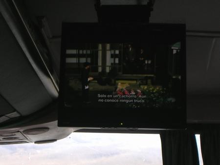 アルゼンチンの夜行バスで上映された「忠犬ハチ公」