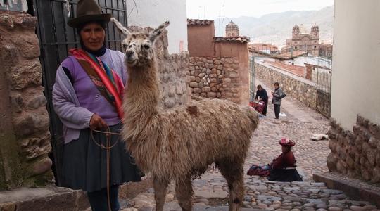 クスコの街で出会ったインディヘナのおばちゃんとアルパカ。もちろん写真撮影は有料(要チップ)