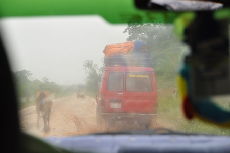 普通車でルレナバケのジャングルの道なき道を進む。普通は4駆
