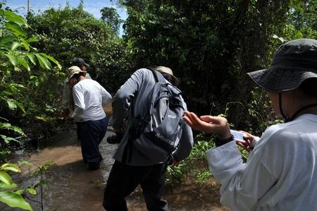 ルレナバケのパンパツアーは蚊がすごくアナコンダどころではない