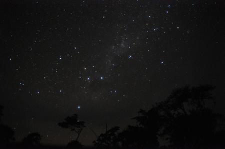 ルレナバケのジャングルから見る南十字星