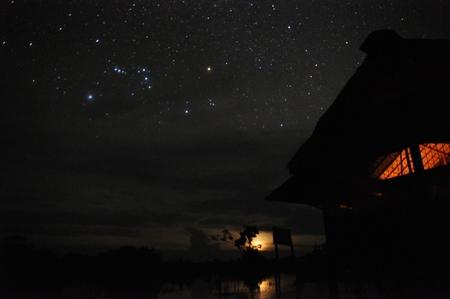 ルレナバケのジャングルから見る満点の星空